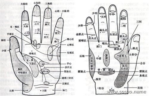 手掌穴位分布_人的手掌穴位图