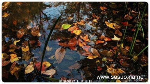 梦见水,解梦梦见水